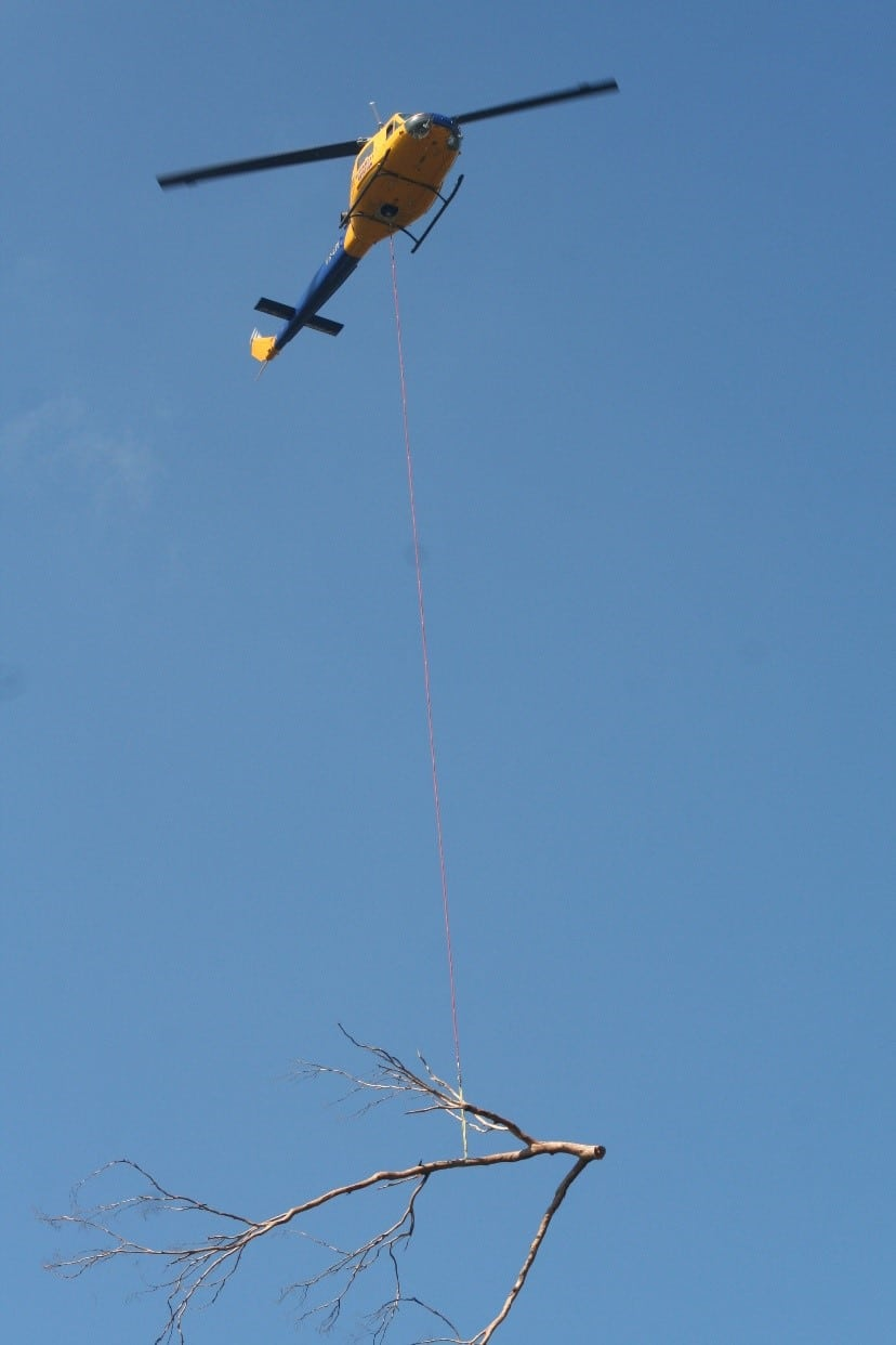 Helilift: Tree removal in Brisbane with the assistance of a helicopter