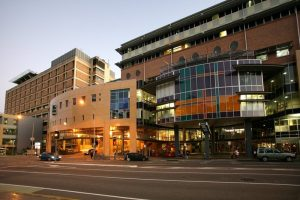 Tree Removals – Mater Hospital