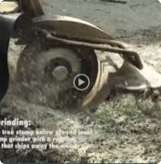 TREE STUMP GRINDING | BTE